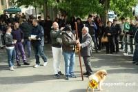 Festa Dragonetti 2010 (15/72)