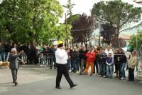 Festa Dragonetti 2010 (48/72)