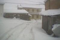 Inverno Dragonetti (5/14)