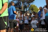 Maratona 2014 (29/306)