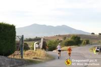 Maratona 2014 (210/306)