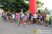 Maratona 2014 (251/306)